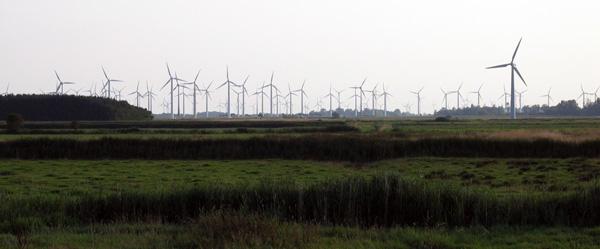 Windpark utgast